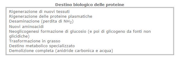 glicidi7