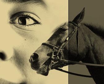 Cavalli-e-Ragazzi_sfondo