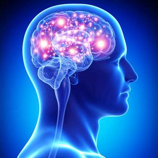 neuroscienzesport