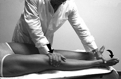 Il ginocchio in medicina manuale sport e medicina for Esterno quadricipite