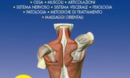 anatomiaumana